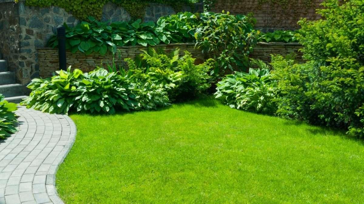 Perspektywa, jak należy postępować w ogrodnictwie szklarniowym