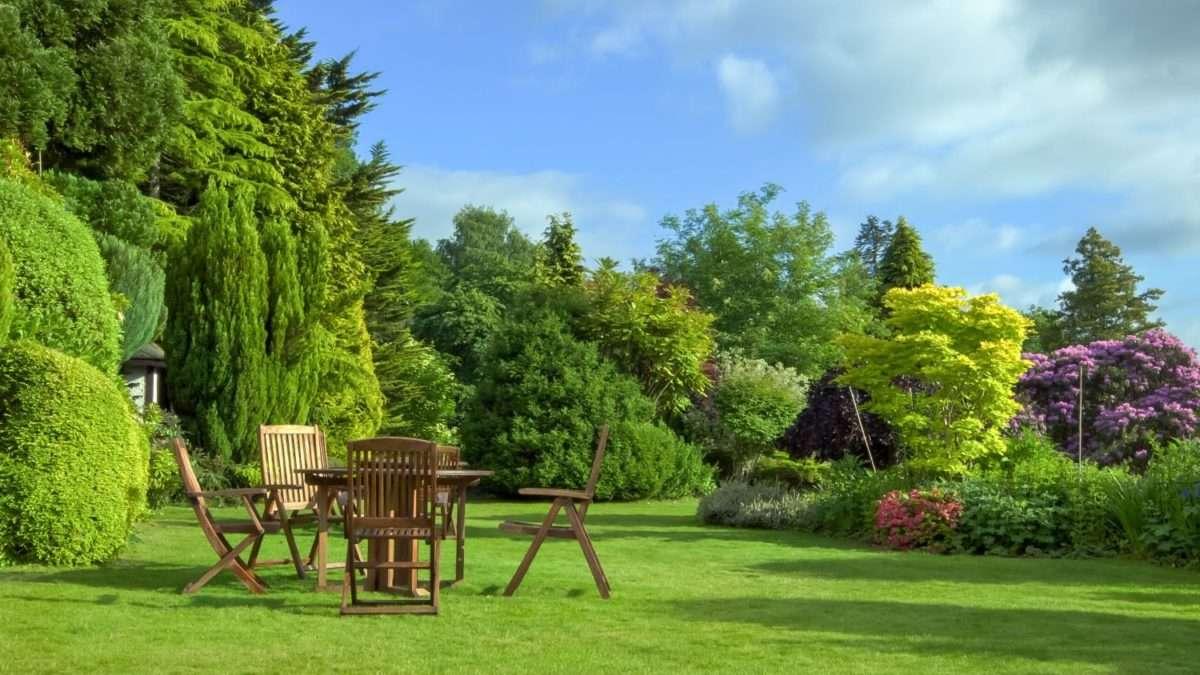 Lato jest blisko: Szybko przygotuj swój ogród!