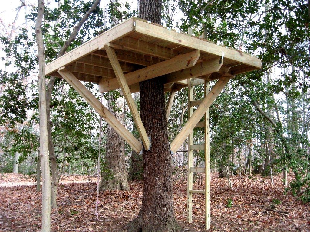 budowa domku na drzewie