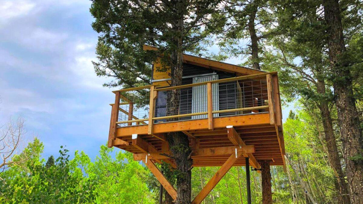 Domek na drzewie – jak zabrać się za jego budowę i ile pieniędzy należy przygotować?