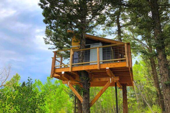 ładny domek na drzewie