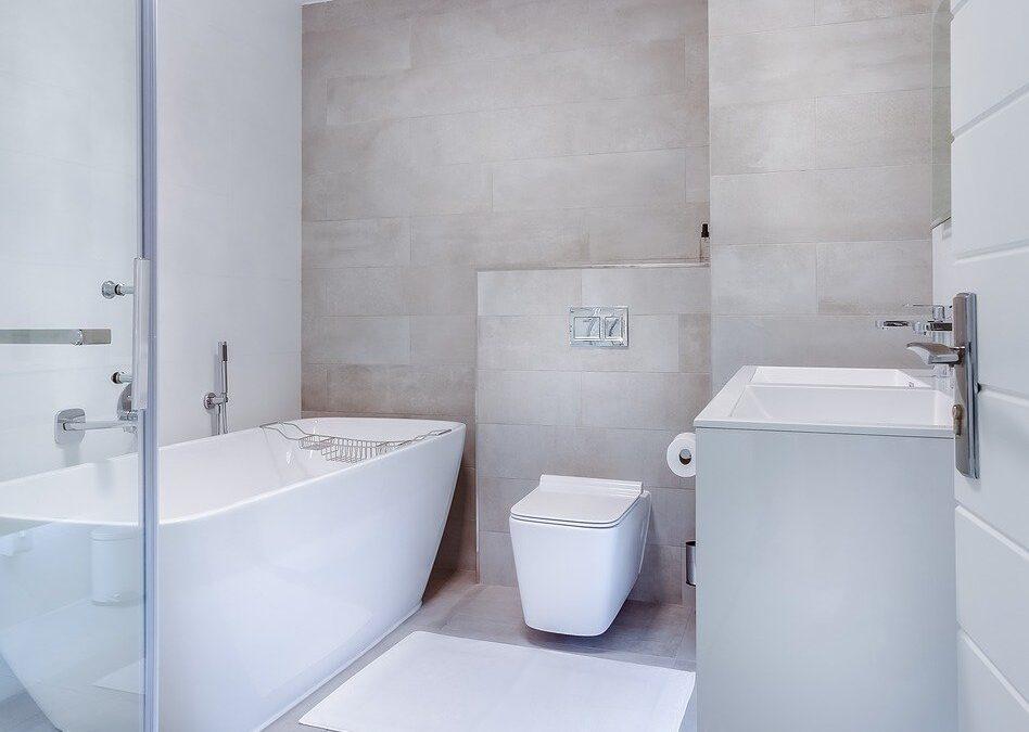Jak utrzymać higieniczną czystość i świeży zapach w toalecie? Kostka do WC i inne niezbędne produkty